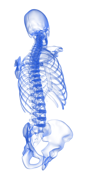 san-antonio-chiropractor